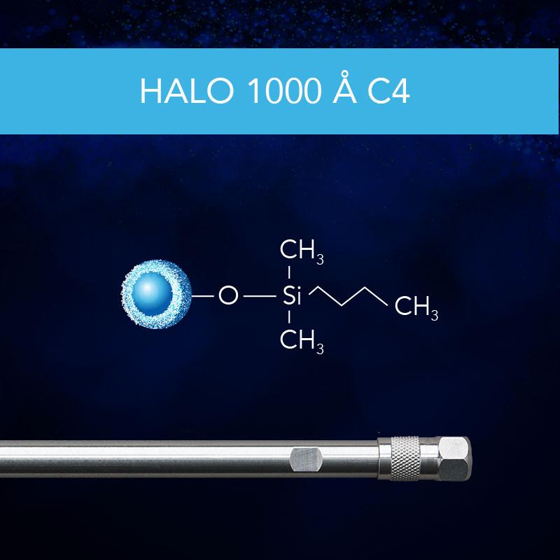 HALO® 1000 Å C4