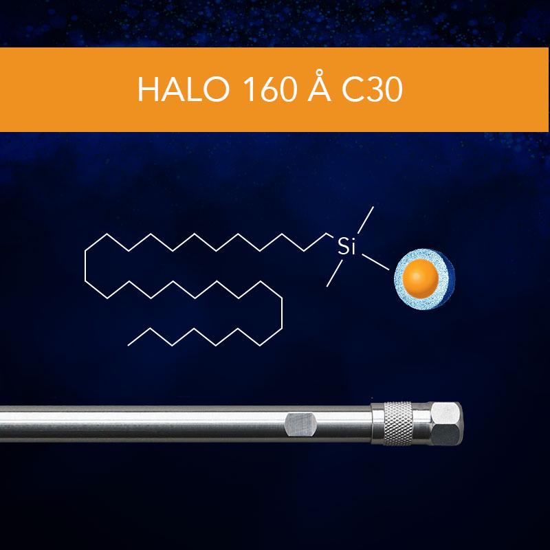 HALO® 160 Å C30 Column