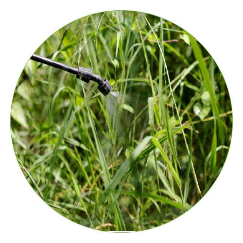 Hplc Analysis Of Herbicides