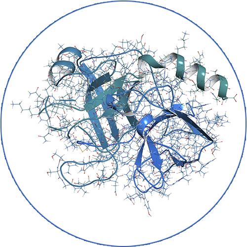 AMT-BioClass-peptide-white
